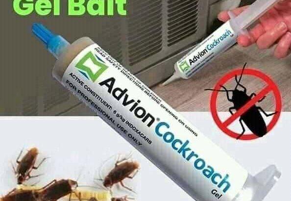 شركة الوقاية لمكافحة الحشرات +971564646880