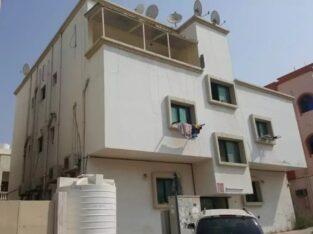 عمارات ومباني للبيع في إمارة عجمان الإمارات